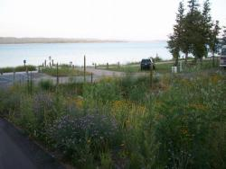 Whiting Park Campground - View from Electric Sites 10-13
