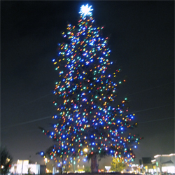 Tree Lighting Icon