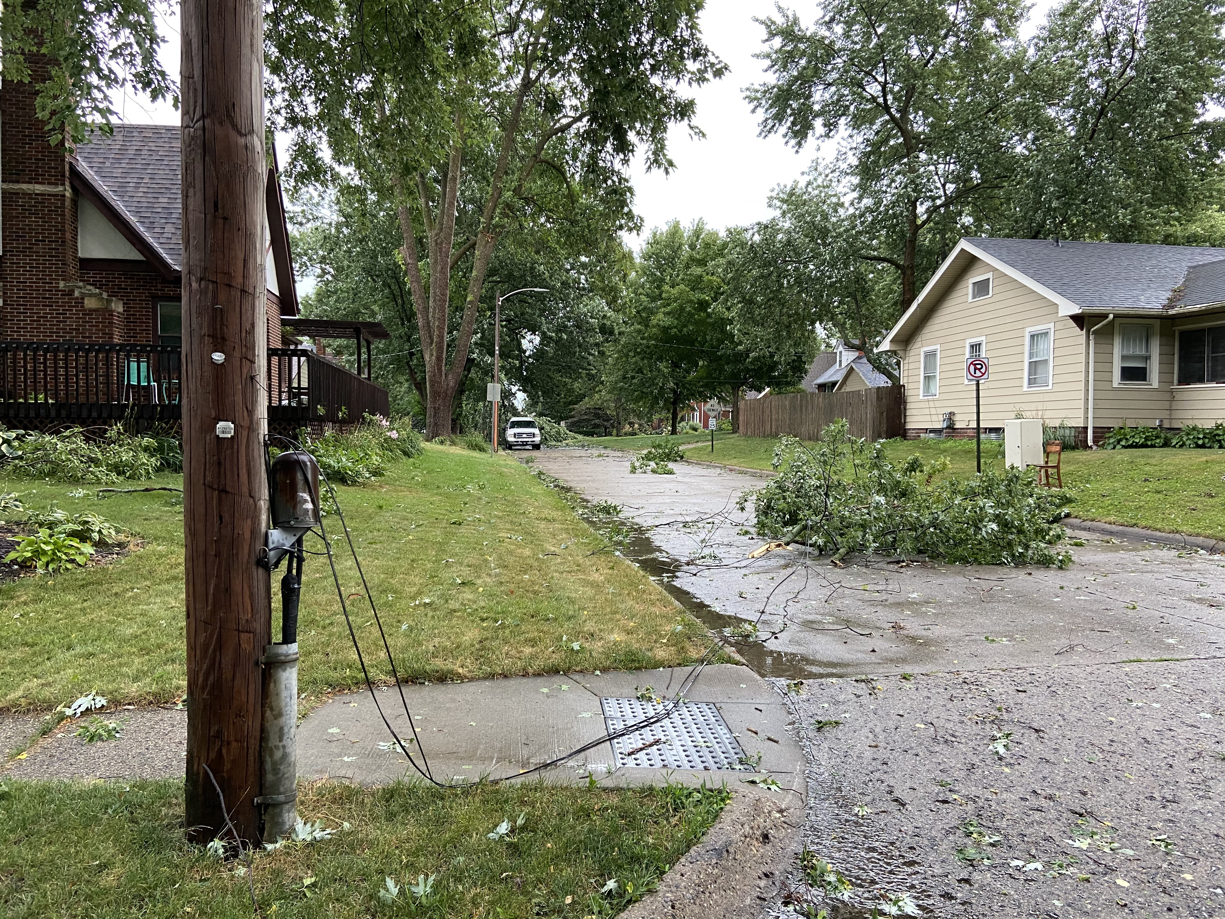 Downed power lines and limbs in Beaverdale